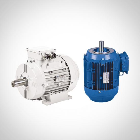 AC Motor Aluminum Three Phase Induction Motor Supplier