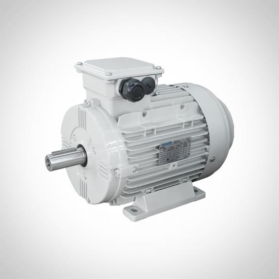 General Purpose Electric Motors