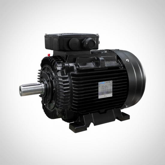 IE2 High Efficiency Electric AC Motor Low Voltage
