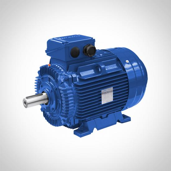Vacuum Motor Pumps Motors Low Voltage AC Motors